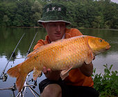 Koï carp caught with bounty hunter baits