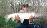See carpistedu88110's grass carp photo