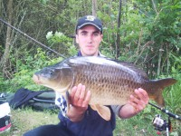 See carpistedu88110's common carp photo