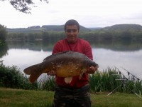 See rorocarpe03600's mirror carp photo