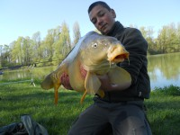 See dimi36's mirror carp photo
