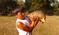 See kevinbmx's common carp photo
