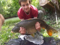 See binus's mirror carp photo