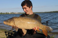 See CarpSpirit72's common carp photo