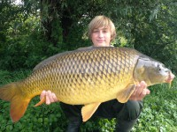 See Carpistedemirecourt's common carp photo