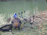 See Carpistedemirecourt's fishing tackle photo