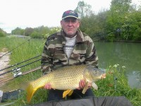 See titanus51's common carp photo