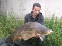 See carpimax02's common carp photo