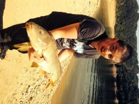 See arpistedu15's common carp photo