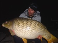 See Donseby's common carp photo