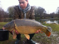 See fabinou27's mirror carp photo