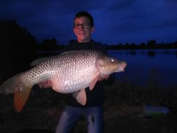 See Teamcarp36's common carp photo